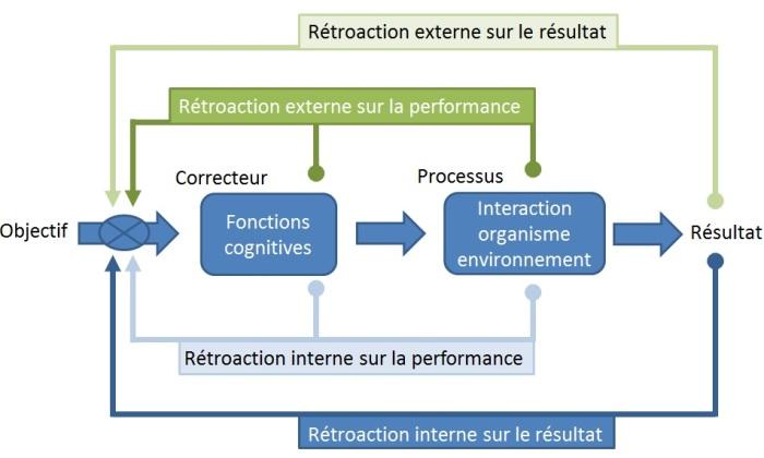 Modèle des rétroactions de Vialatte